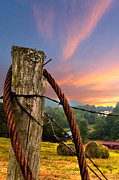 Tennessee Hay Bales Photo Prints - Sunrise Lasso Print by Debra and Dave Vanderlaan