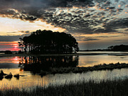 Landscape Framed Prints Framed Prints - Sunrise on Assateague Framed Print by Steven Ainsworth