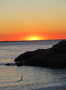 Pamela Turner Prints - Sunrise on Cape Anne Print by Pamela Turner