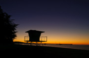 Botanical Beach Photos - Sunrise on the Beach by Connie Cooper-Edwards