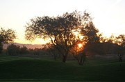 Pictures Photo Originals - Sunrise on the course by Russ Bertlow