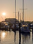Eastern Shore Posters - Sunrise on the Eastern Shore of Maryland Poster by Brendan Reals