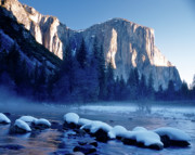 Climbing Posters - Sunrise on the Merced River and El Capitan Poster by Ed  Riche