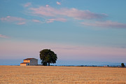 French Home Prints - Sunrise over lone farmhouse Print by Brian Jannsen