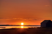 Eastham Posters - Sunrise over salt pond Poster by John Greim