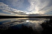 Lake Reflection Framed Prints - Sunrise Over Swan Lake, Alberta, Canada Framed Print by Zoltan Kenwell