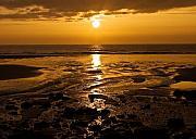 Sunrise Over The Sea Print by Svetlana Sewell