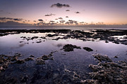 Empty Pool Prints - Sunrise over tide pools Print by Matt Tilghman