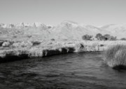 Black And White Photos - Sunrise Owens River CA by Troy Montemayor