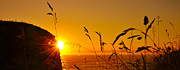 Towards Posters - Sunrise Pano Poster by Svetlana Sewell
