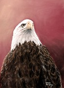 Bald Eagle Pastels Metal Prints - Sunrise Metal Print by Pat Morris