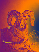 Grand Slam Digital Art Posters - Sunrise Ram Poster by Mayhem Mediums