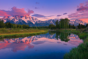 Snake In Tree Posters - Sunrise Schwabacher Landing - Grand Teton Np Poster by Proframe Photography