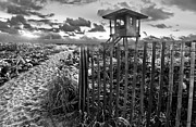 Beach Fence Posters - Sunrise Sentinel in Black and White Poster by Debra and Dave Vanderlaan