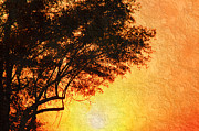 Outside Mixed Media - Sunrise Silhouette by Andee Photography