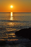 Marginal Way Prints - Sunrise Sparkle Print by Joy Bradley                   DiNardo Designs