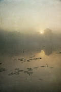 Paul Grand Art - Sunrise through mist by Paul Grand