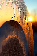 Greeting_cards Posters - Sunrise Thru Ice Poster by Christy Patino