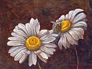 White Petals Prints - Suns Harvest Print by Jeff Brimley