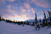 Winter Scenes Photos - Sunset Along The Snow-covered Shores by Paul Nicklen