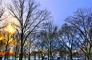 Battery Park Framed Prints - Sunset at Battery Park Too Framed Print by Randy Aveille