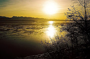 February Ocean Prints - Sunset at Cook Inlet - Alaska Print by Juergen Weiss
