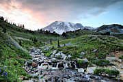 Mt Rainier Stream Framed Prints - Sunset at Edith Creek Framed Print by Winston Rockwell