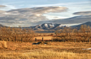 Cow Framed Prints Framed Prints - Sunset at Elk Mountain WY Framed Print by James Steele