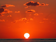 Sun Shades Prints - Sunset at Sea Print by Graham Taylor