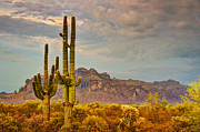Southwest Landscape Art - Sunset at the Superstitions  by Saija  Lehtonen