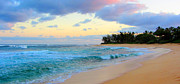 Brad Scott - Sunset Beach Hawaii