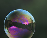 Sally Dougherty - Sunset Bubble