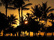 Ranjini Kandasamy Metal Prints - Sunset by the Beach Metal Print by Ranjini Kandasamy