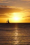 Catamaran Prints - Sunset Catamaran Print by Ashlee Meyer