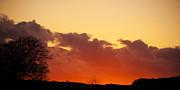 Svetlana Sewell - Sunset Cloud