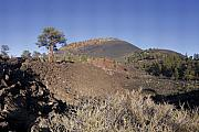 Volcano Prints - Sunset Crater from Lava Flow Trail Print by Brian Lockett