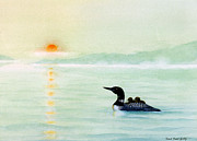 Loon Paintings - Sunset Crusing by Robert Boast Cornish