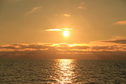 Whale Photo Originals - Sunset from whale watching by Andres Zoran Ivanovic