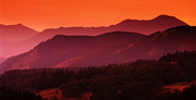 Canadian Foothills Landscape Posters - Sunset In Alberta Poster by Bob Christopher