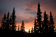 Silhouettes Metal Prints - Sunset In An Alpine Meadow Metal Print by Taylor S. Kennedy