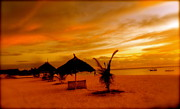 Lanscape Metal Prints - Sunset in Zanzibar Metal Print by Joe  Burns
