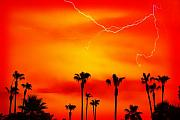 Southwest Landscape Metal Prints - Sunset Lightning and Palm Trees Metal Print by James Bo Insogna