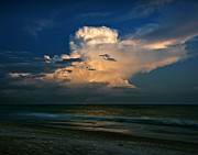 Florida Flowers Prints - Sunset Print by Mario Celzner
