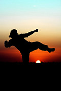 Kick Boxing Prints - Sunset Martial Arts Print by Johan Larson