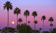 Desert Photography Posters - Sunset Moon Poster by Dave Dilli