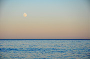 Hamptons Photos - Sunset Moon by Marni Spencer