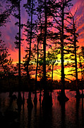Sunset On Horseshoe Lake 1 Print by Marty Koch