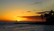 Yellow Trees Photos - Sunset on Kauai by Dana Kern