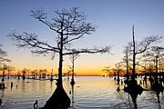 Sunset On Lake Mattamuskeet Print by Rob Travis