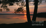 Silhouettes Posters - Sunset on Sister Bay Poster by Sandra Bronstein